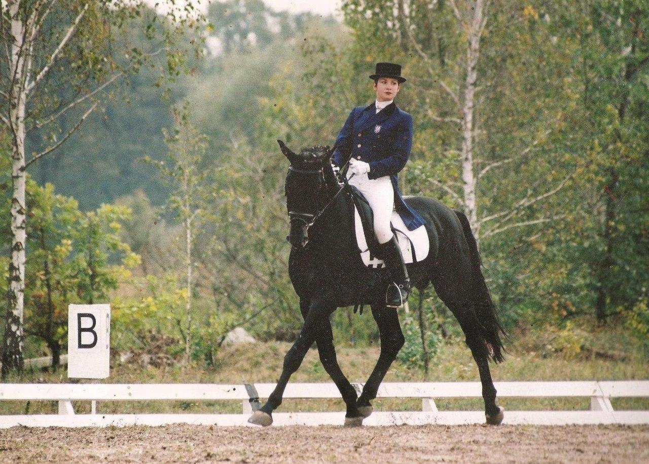 Открытый кубок «IIC» по конным видам спорта