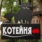 Кафе «КОТейня»